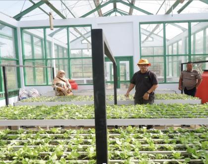 PPM FEB Unja Ajak Masyarakat Bisnis Sayuran Hidroponik